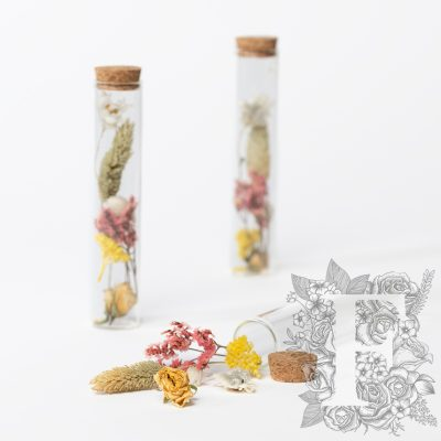 Dried flower - glass vial with cork - Medium