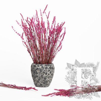 Lavander - Bunch - Pink