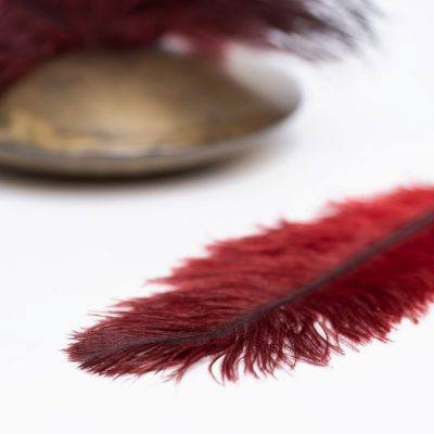 Ostrich Feather - Pack of 3 - Red
