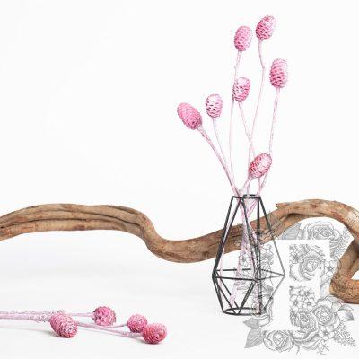 Sabulsom - Branch - 3 stems