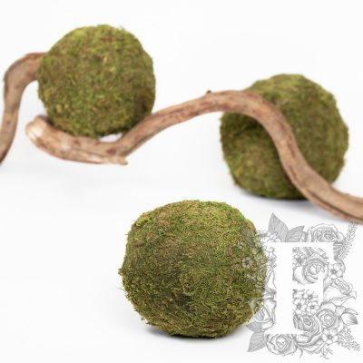 Moss Sphere - Large