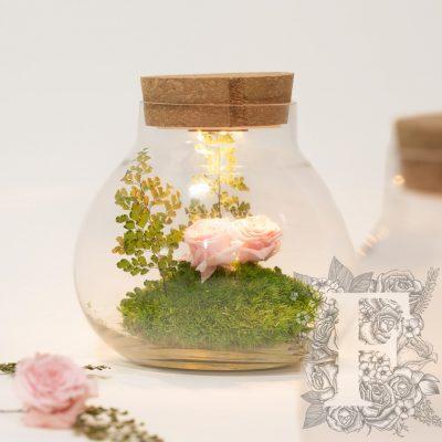 Cork top - Glass jar - LED