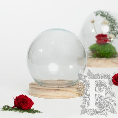 Globe Bell Jar - LED -light up