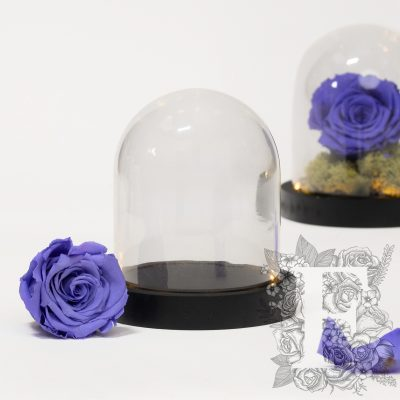 Bell jar - LED - Small