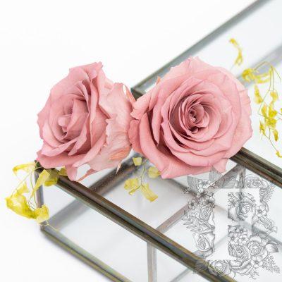 Full bloom rose - 6 Heads