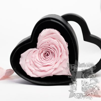 Gift Box - Heart