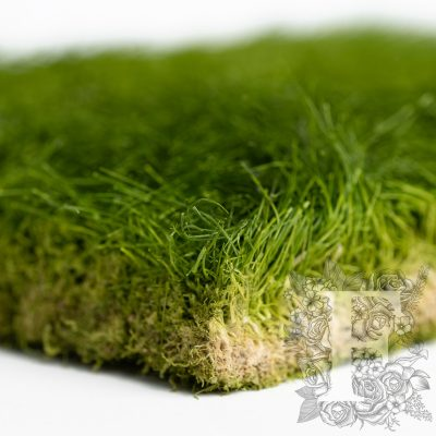 Preserved turf - 30cm by 37cm