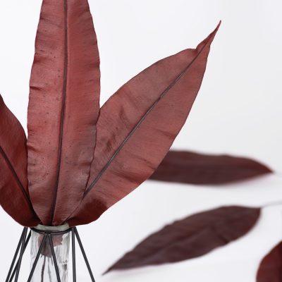 Tropical Leaf - 10 Stems