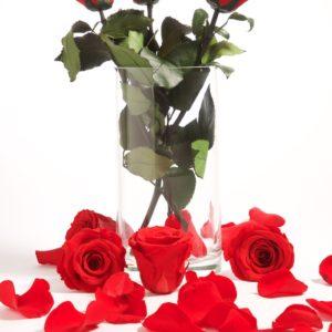 Rose with Stem 30cm