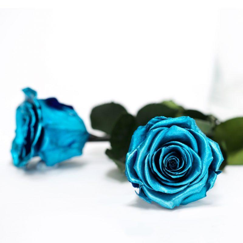 Blue Metallic