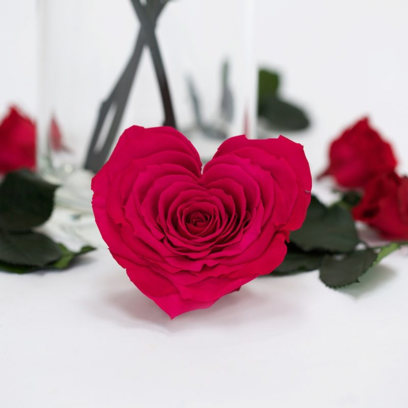 Pink Heart (dark)