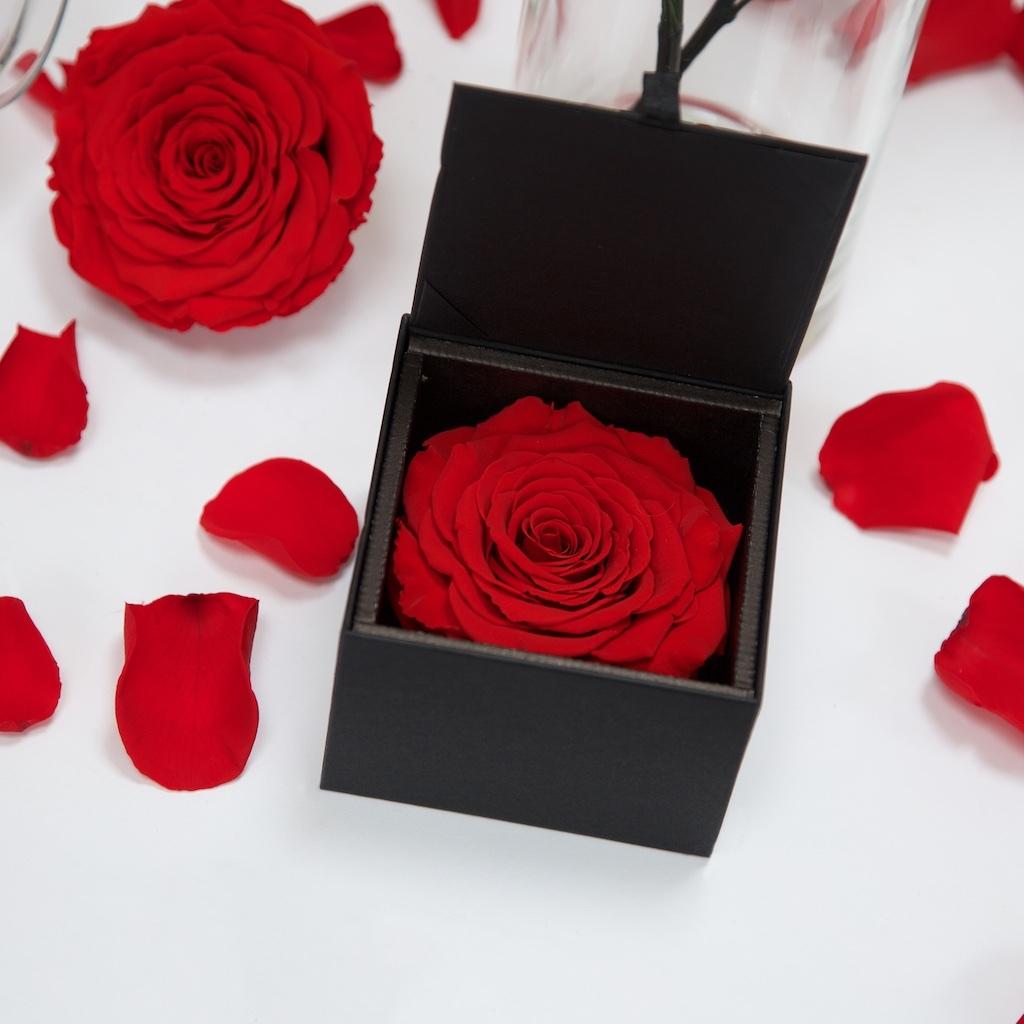 Gift Box XXL Red02 2