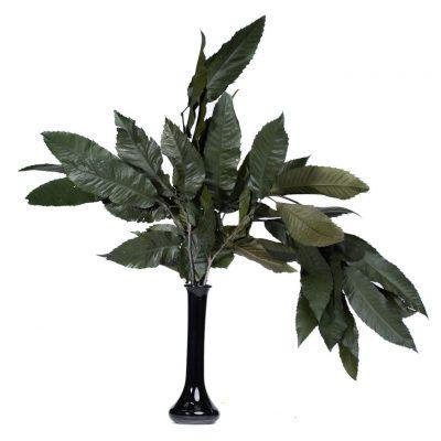 Chestnut Branch - Bunch