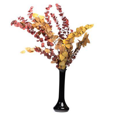 Premium Eucalyptus - autumnal - Bunch