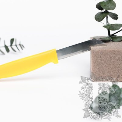 Floral Knives - 5 Pack
