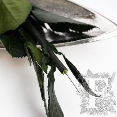 Rose Stem - 30cm
