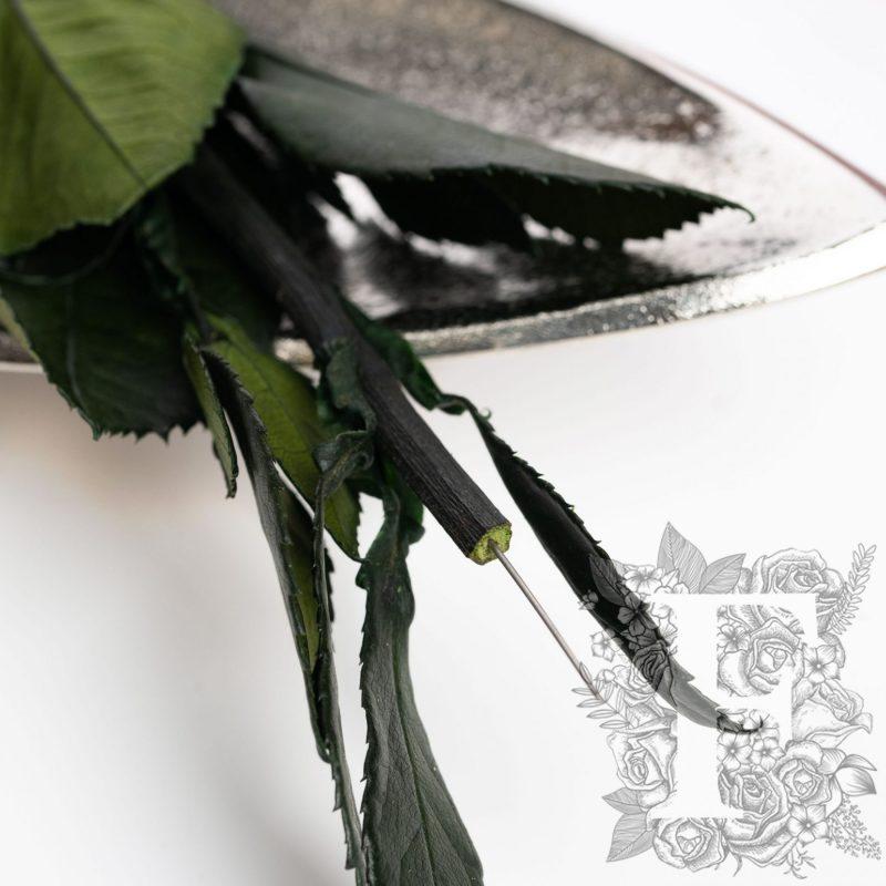 296 Endura_03-11-20-218