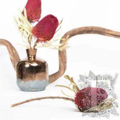 Banksia Hookerana - Stem - Bordeaux