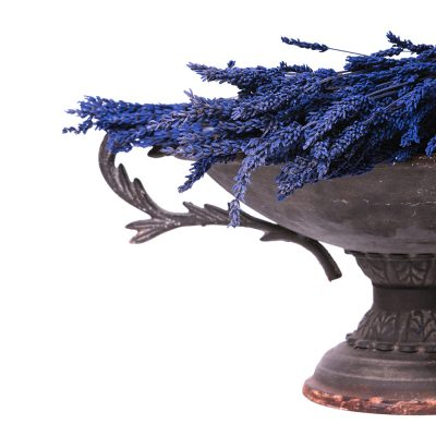 Lavender - Bunch - Blue