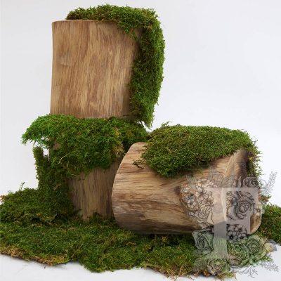 Standard Flat Moss - Bulk - 2.5KG
